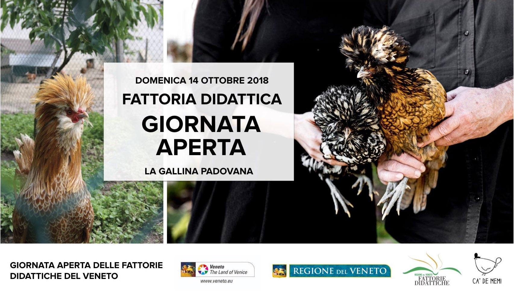 fattoria_didattica_padova