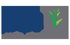 website-logo1.png