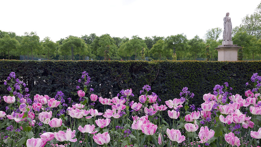 Luxembourg gardens.jpg