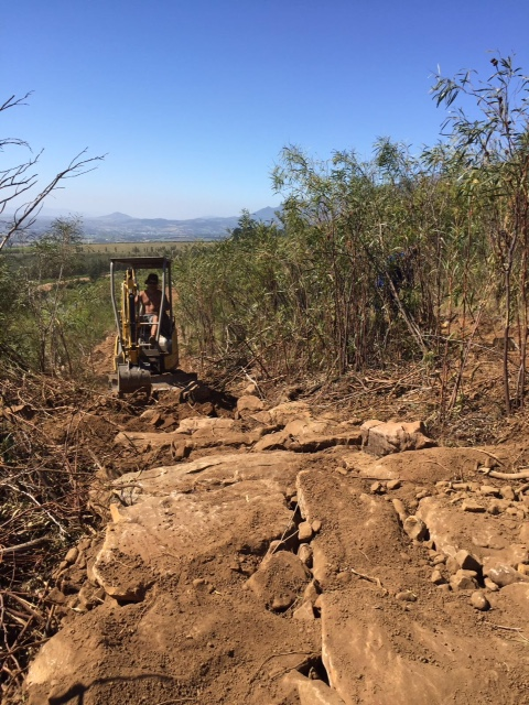 Helderberg Farm prepares to host the second round of the Stihl 2016 SA MTB Cup XCO Series in Somerset West, Western Cape on Saturday 27 February. Photo: Supplied