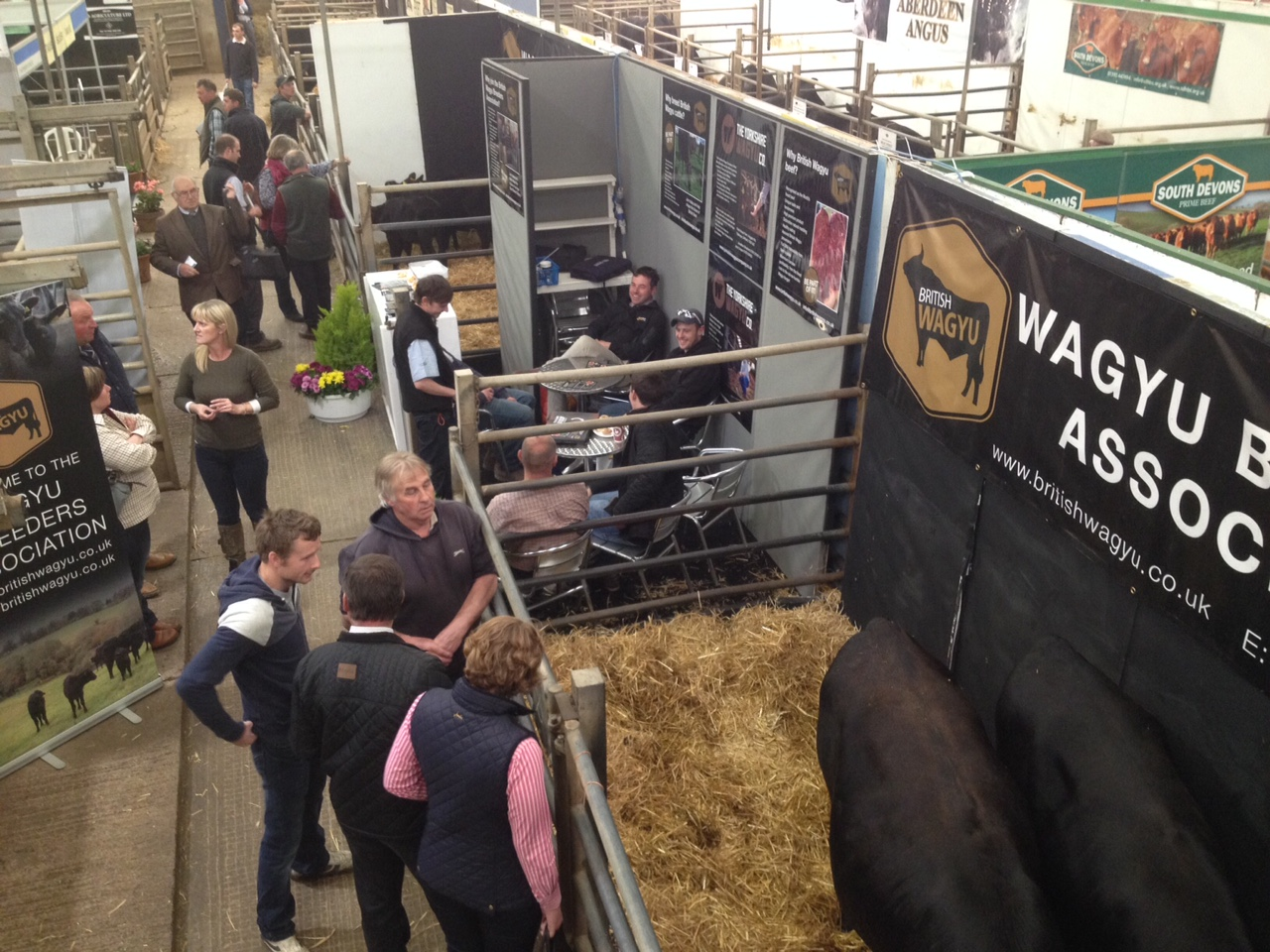 Wagyu Stand at Beef Expo.JPG