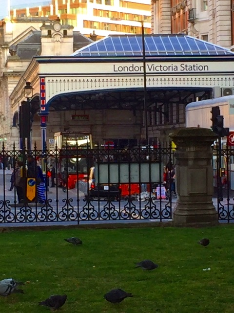 Pigeons. Victoria Station.