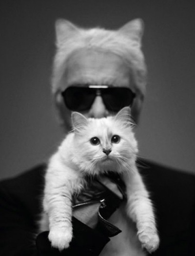 Karl Lagerfeld and Choupette; image via The Telegraph.
