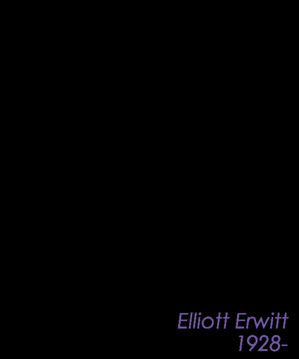 Erwitt.png