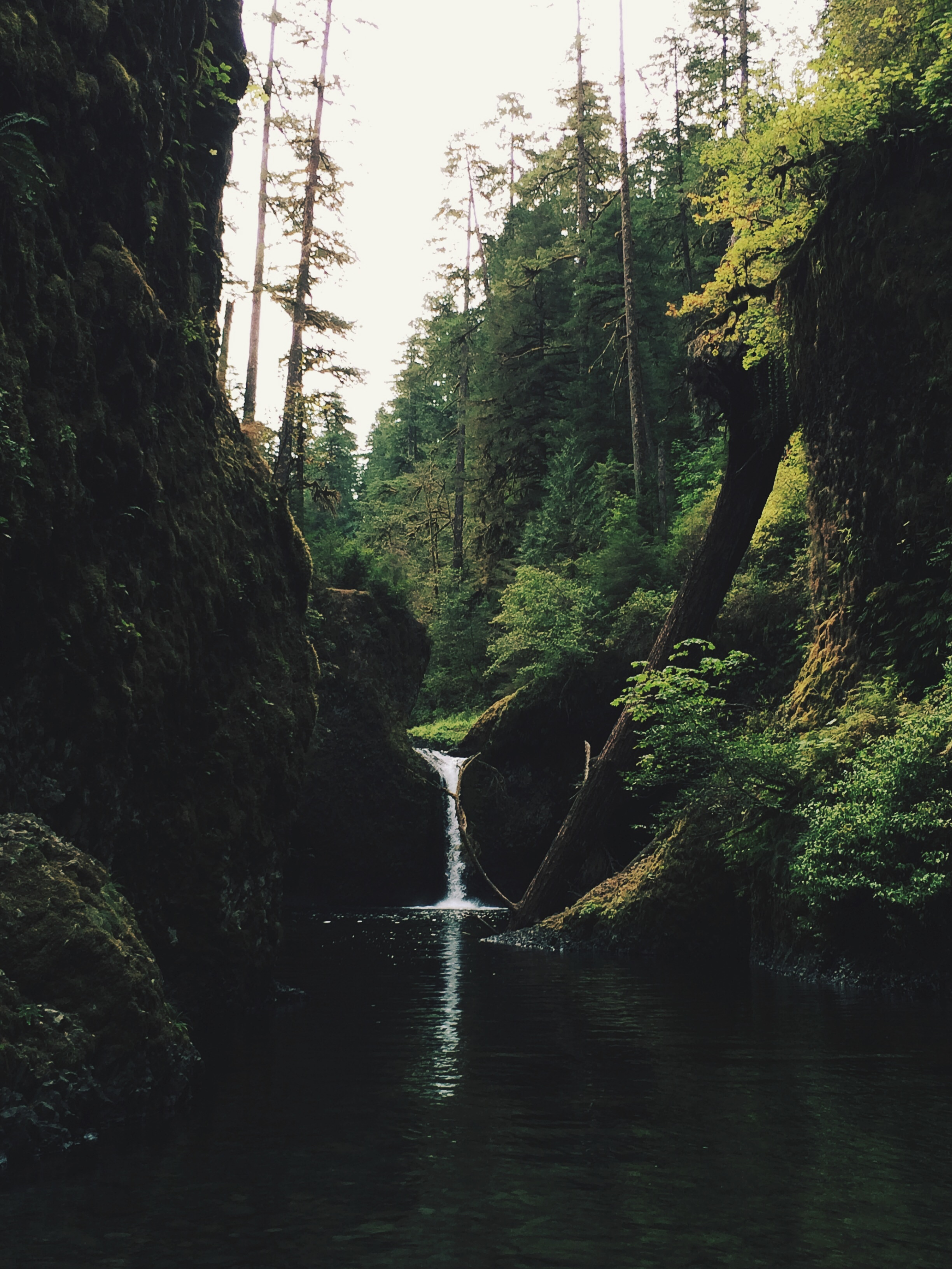 Punch Bowl Falls, OR