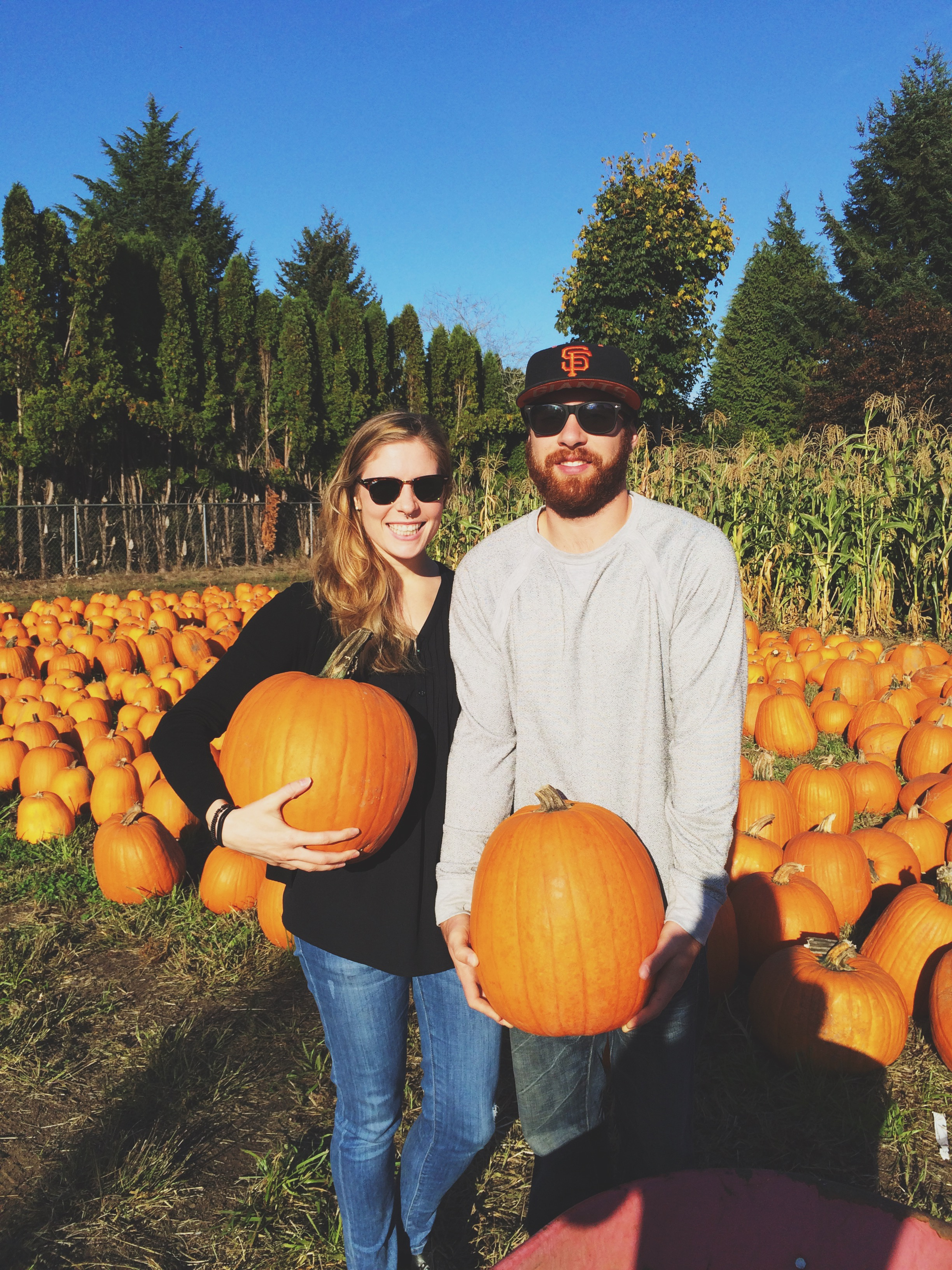 Obligatory pumpkin patch photo