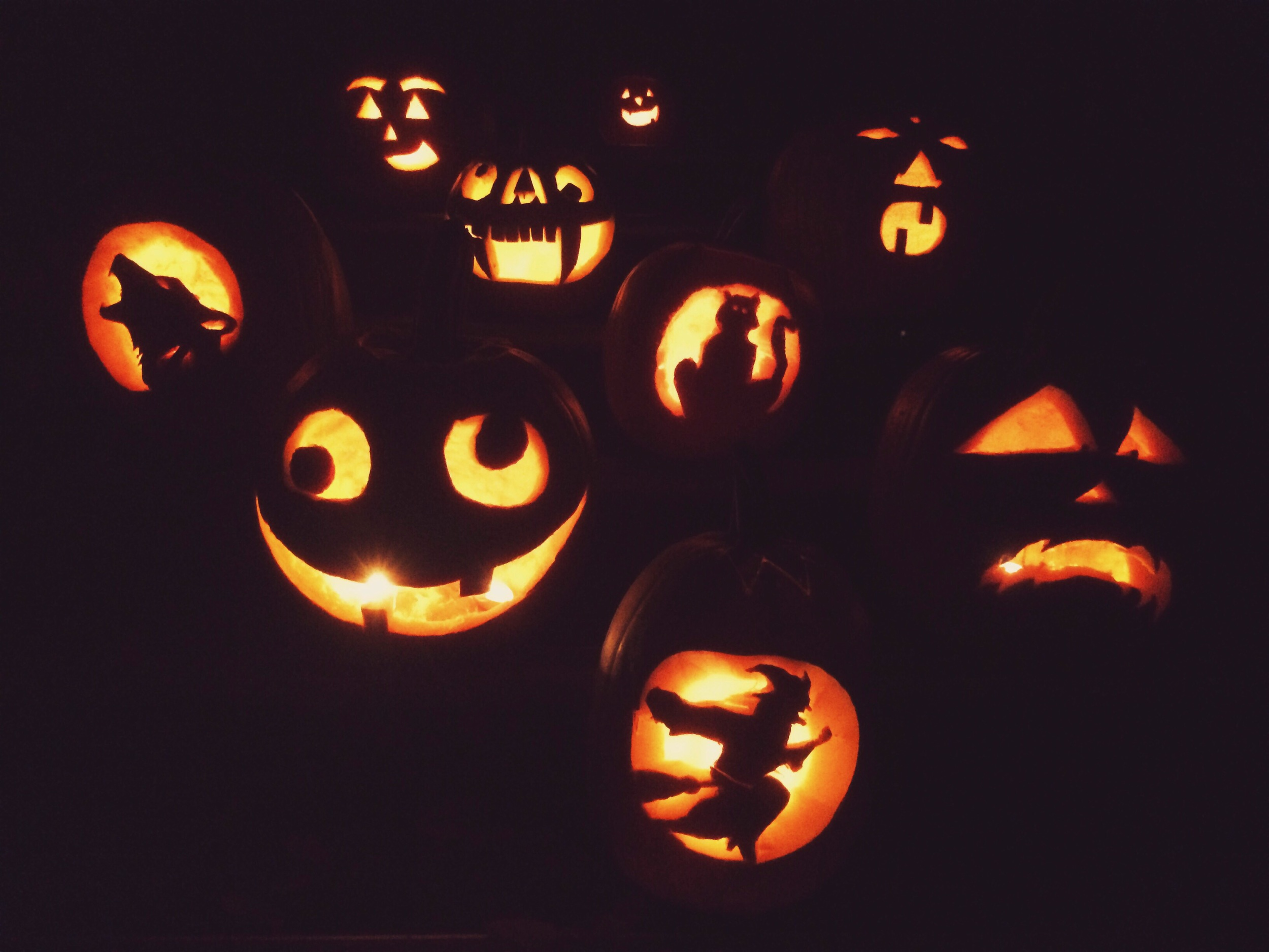 All of the pumpkins from Jaz's carving party!