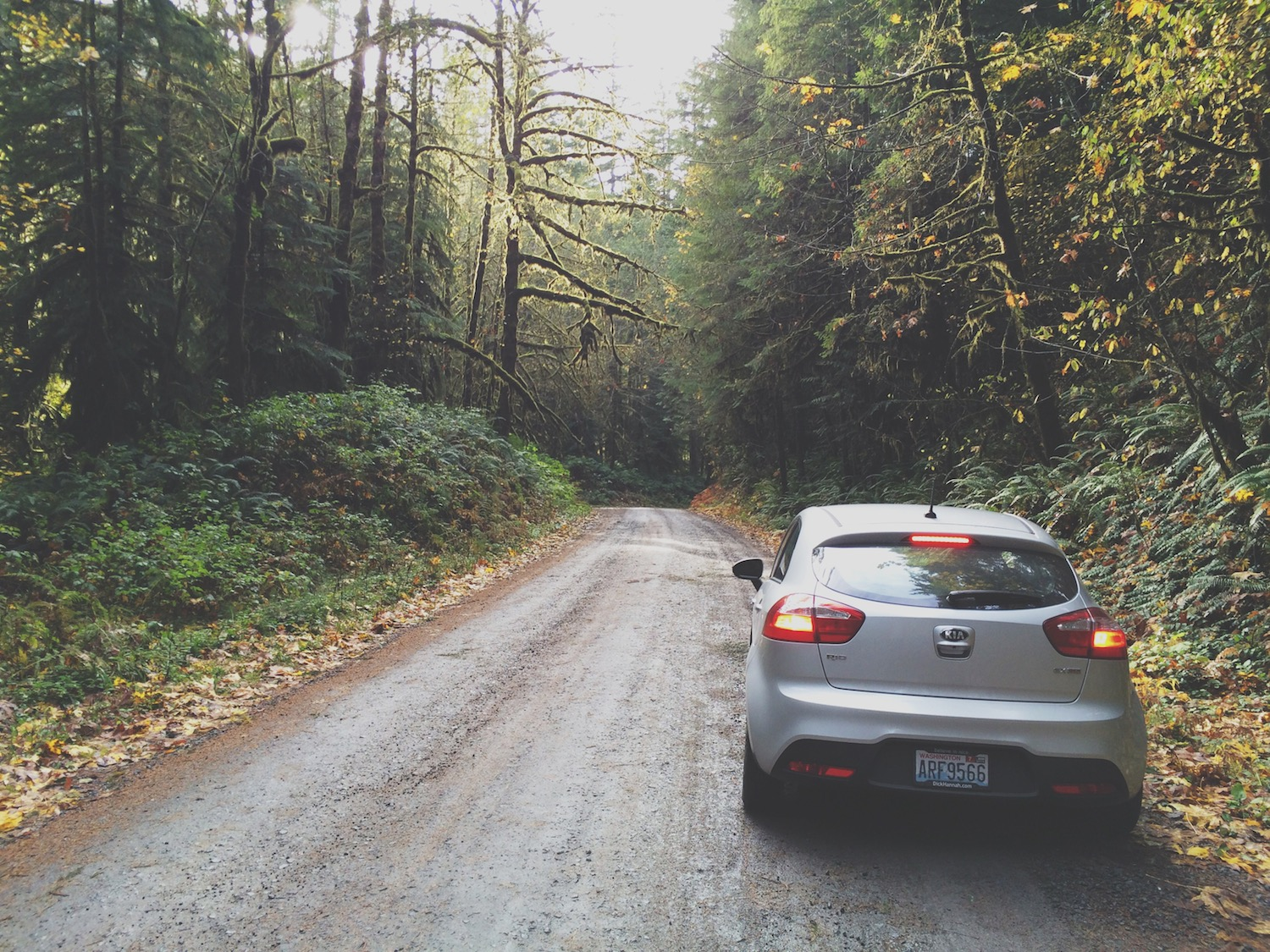 Jaz, Buck, Marsh, and I tried going to Bagby Hot Springs, OR, but found ourselves instead lost on a long, treacherous logging road.