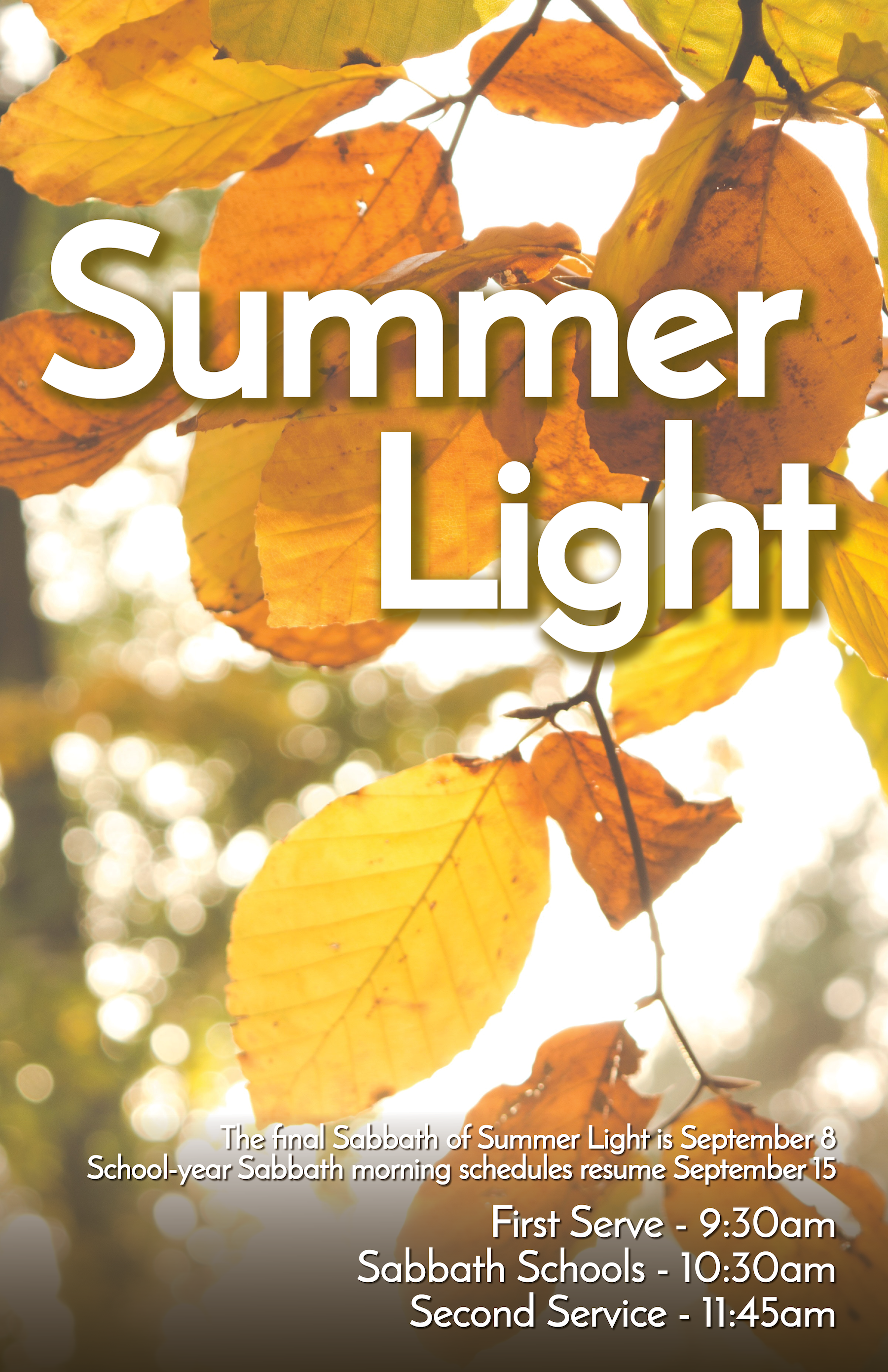 Summer Light 2018 (ending).png