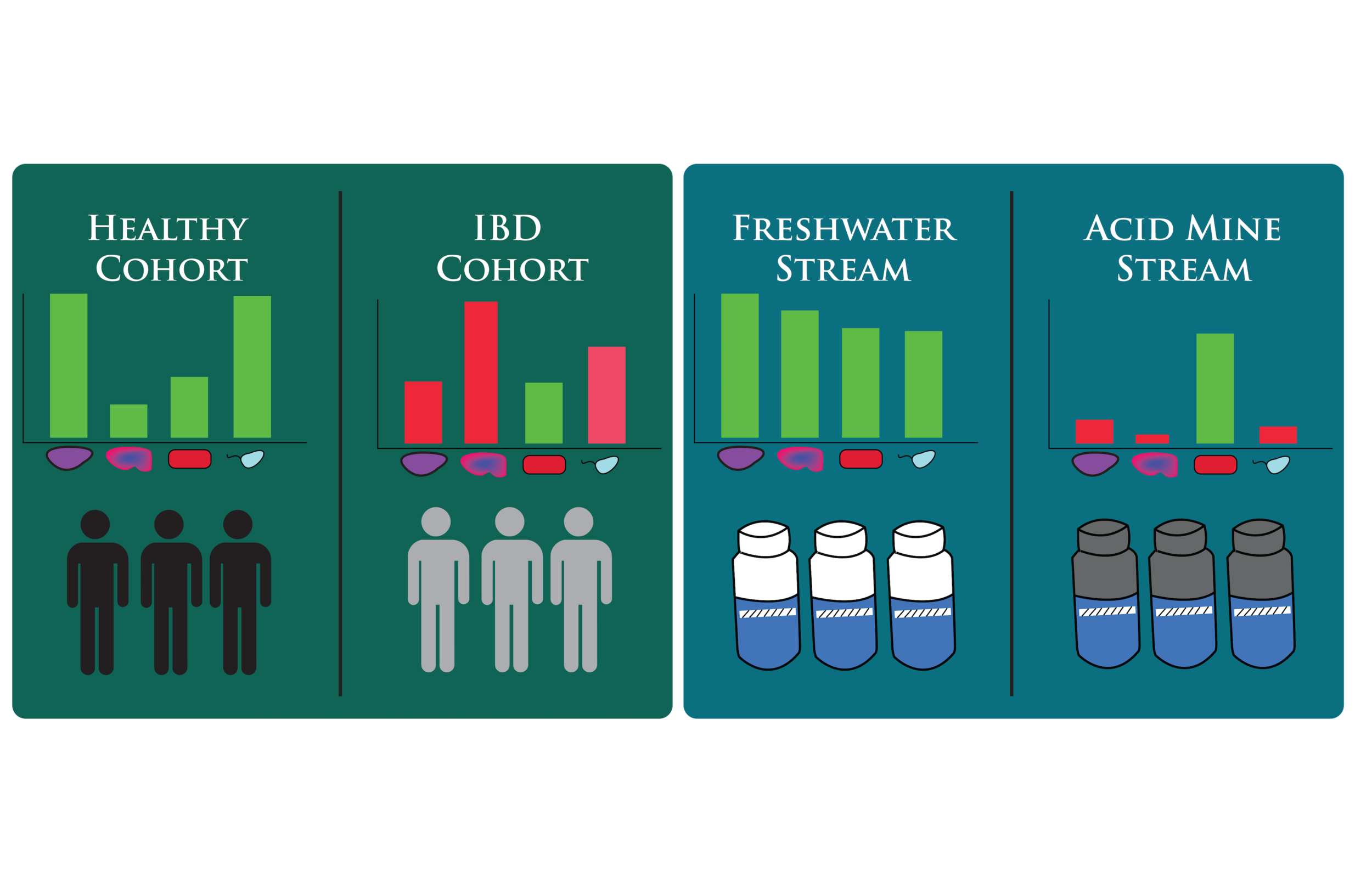With our bacterial community analysis, trends in microbial community structure between cohorts can be visualized and assessed for significance within any sample matrix.