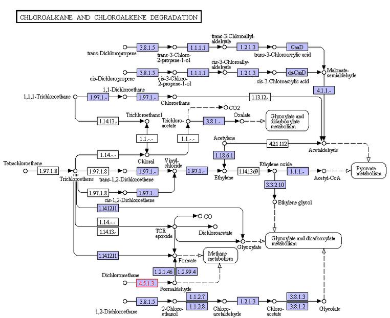 DCM Degradation Pathway.png