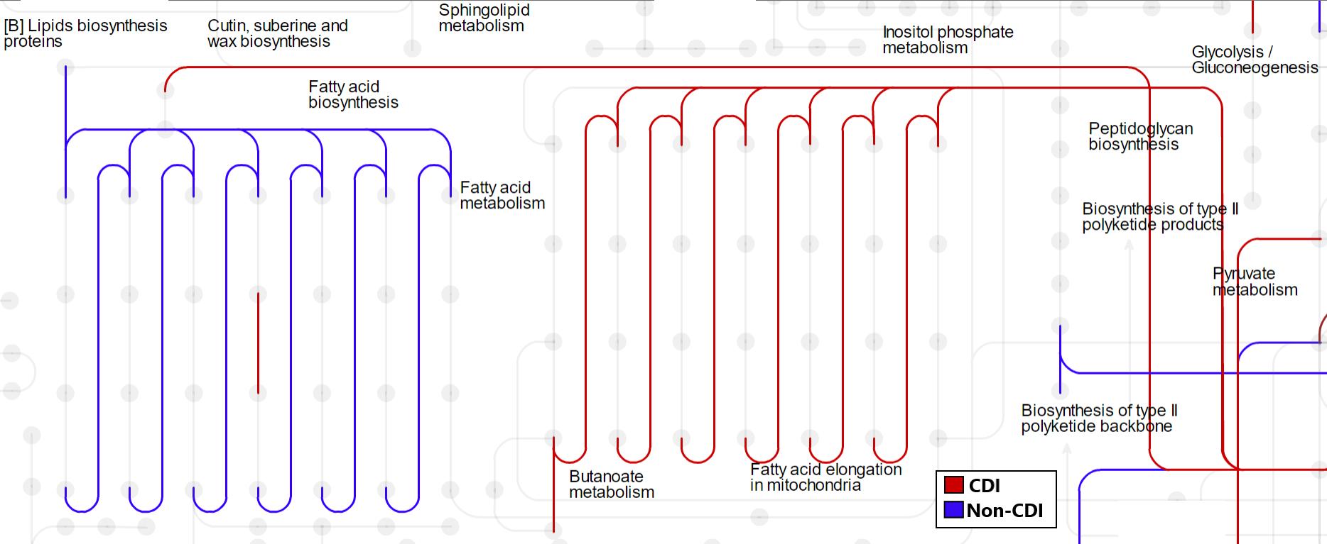 4.MT_Lipid metabolism.png