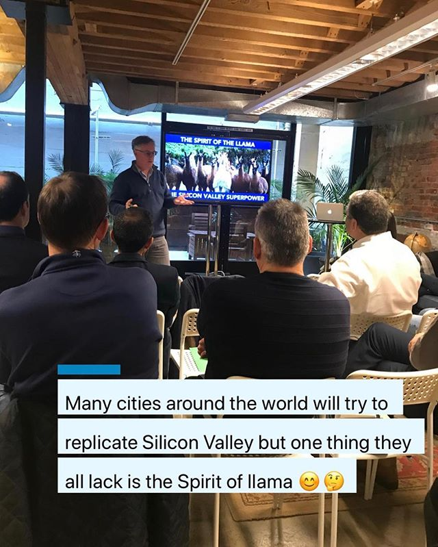 Many cities around the world will try to replicate Silicon Valley but one thing they all lack is the Spirit of the llama🦙 #billoconnor #executiveeducation #corporateinnovation #entrepreneurship #innovation #strategiclearning #innovationimmersion #legacyventures