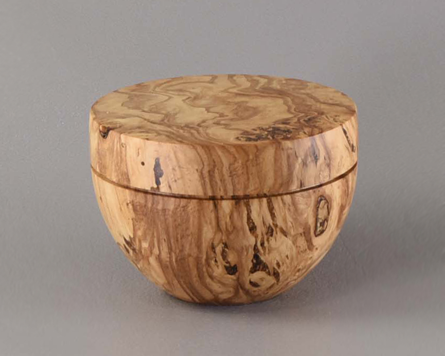 Burr Box Elder