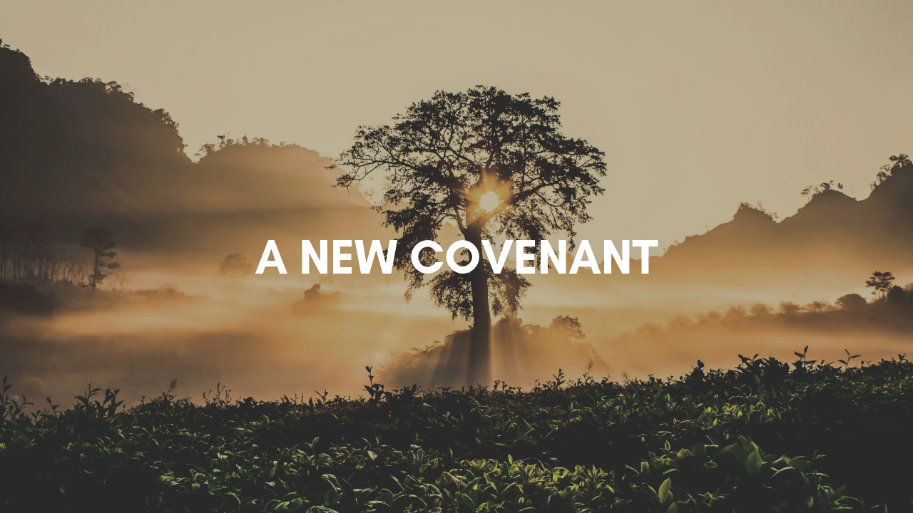 New Covenant.PNG