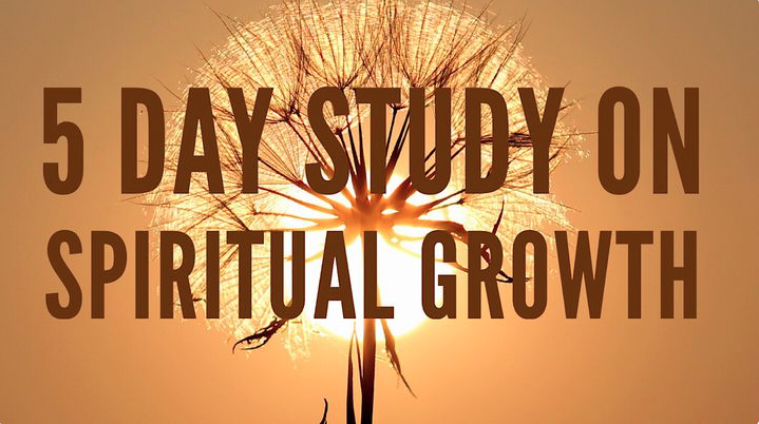 We expect trees, grass, animals and babies to grow. When they don't, we know something is wrong. What is true in the natural realm is also true in the spiritual realm. Believers are expected to grow, and when they don't, something is wrong. In this five-day reading plan, Dr. Tony Evans will introduce you to the process of spiritual growth.
