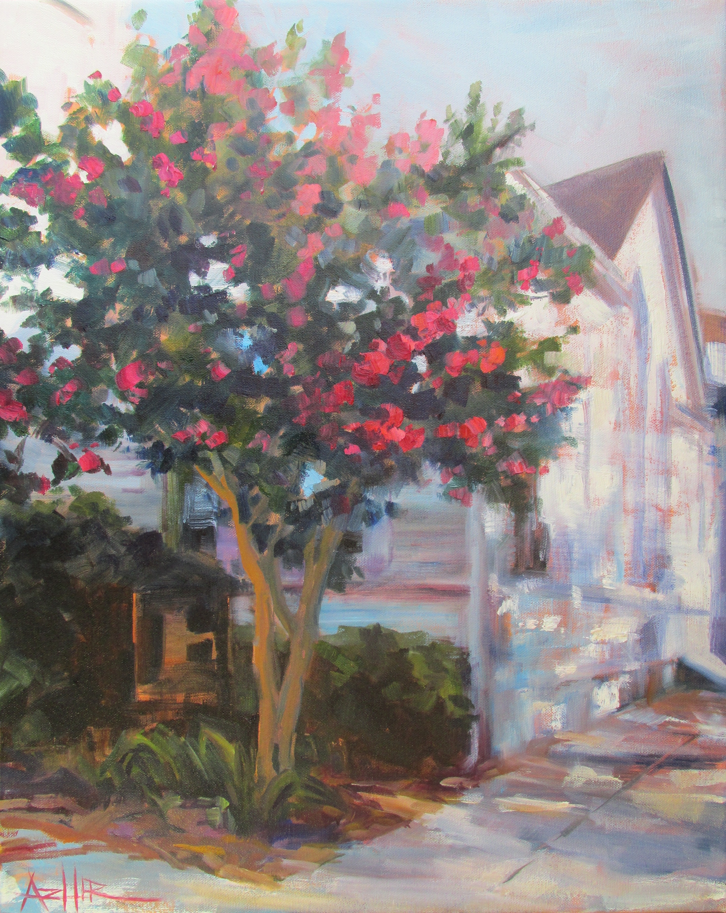 """SOLD, The Crepe Myrle Tree, Copyright 2014 Hirschten, Oil on Canvas 16"""" x 20"""""""
