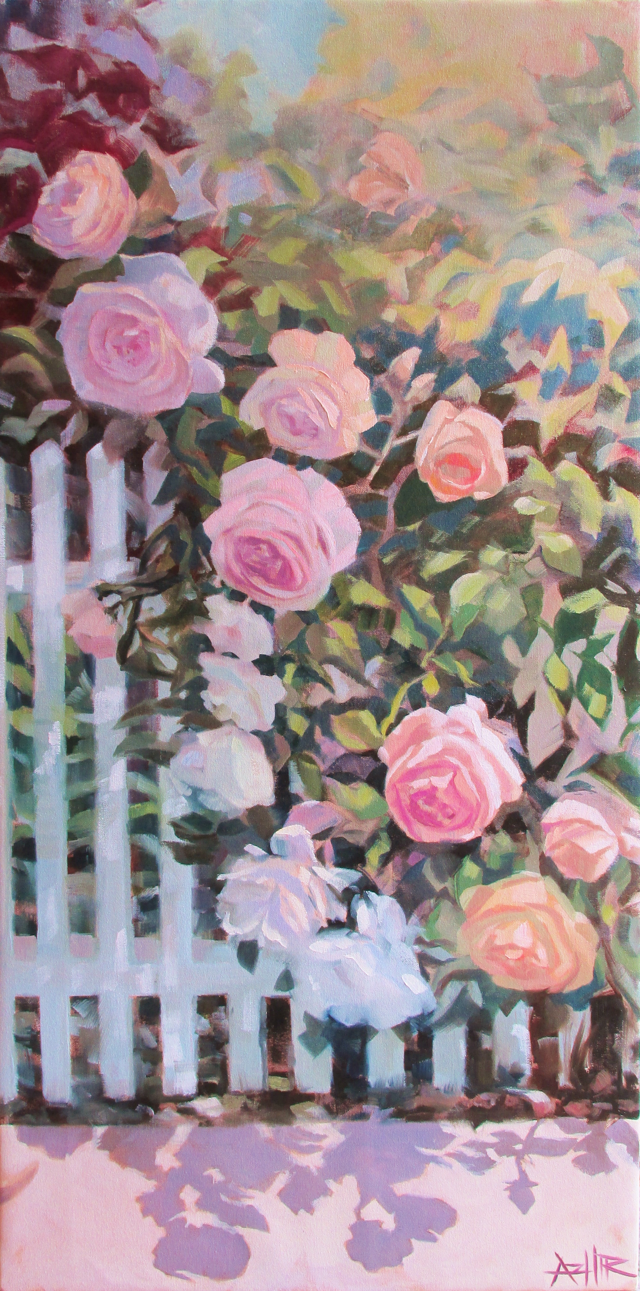 """SOLD, Roses on the Picket Fence, Copyright 2016 Hirschten, Oil on Canvas, 18"""" x 36"""""""