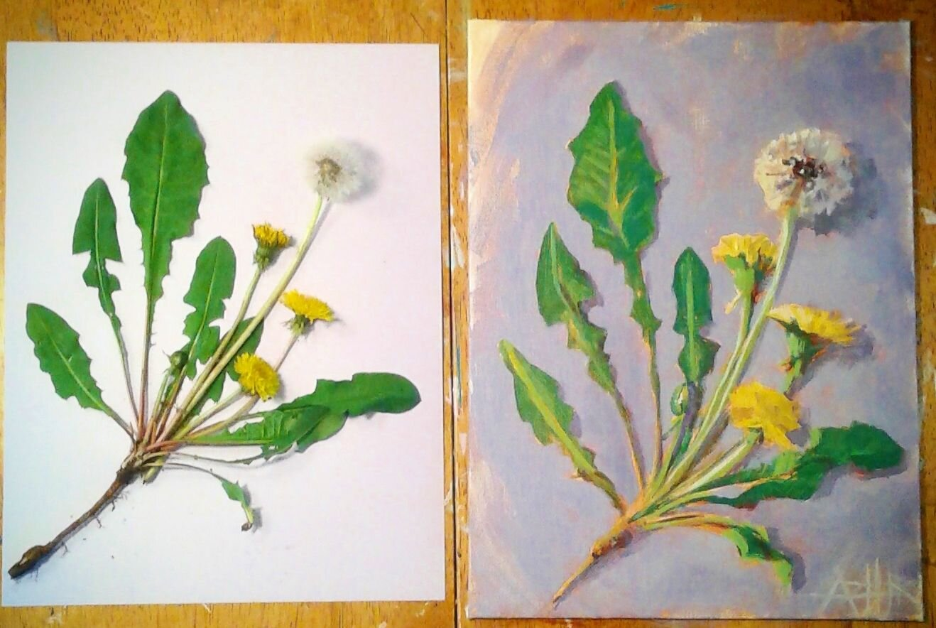 SOLD, Dandelion's Are Beautiful!, Acrylic on Canvas, Copyright 2019 Hirschten