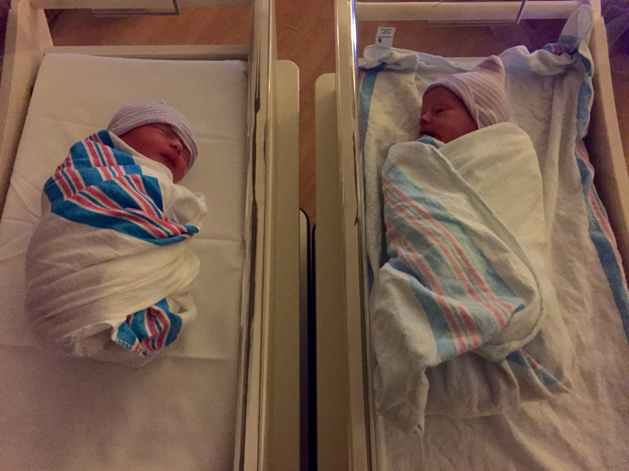 Side by side in their bassinets - 1 day old