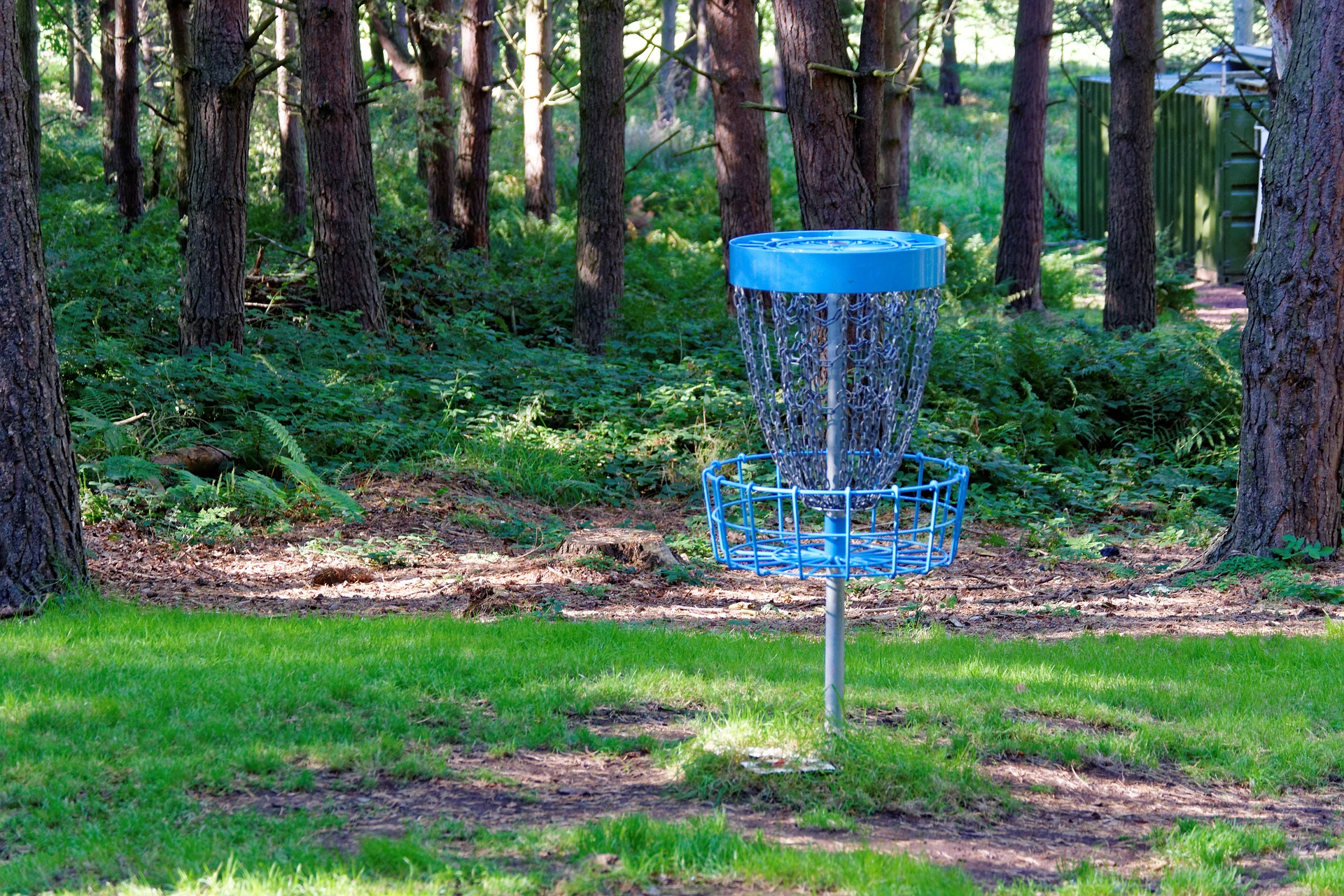 MaxPixel.freegreatpicture.com-Forest-Disc-Golf-Netting-Frisbee-Game-Frisbee-970865.jpg