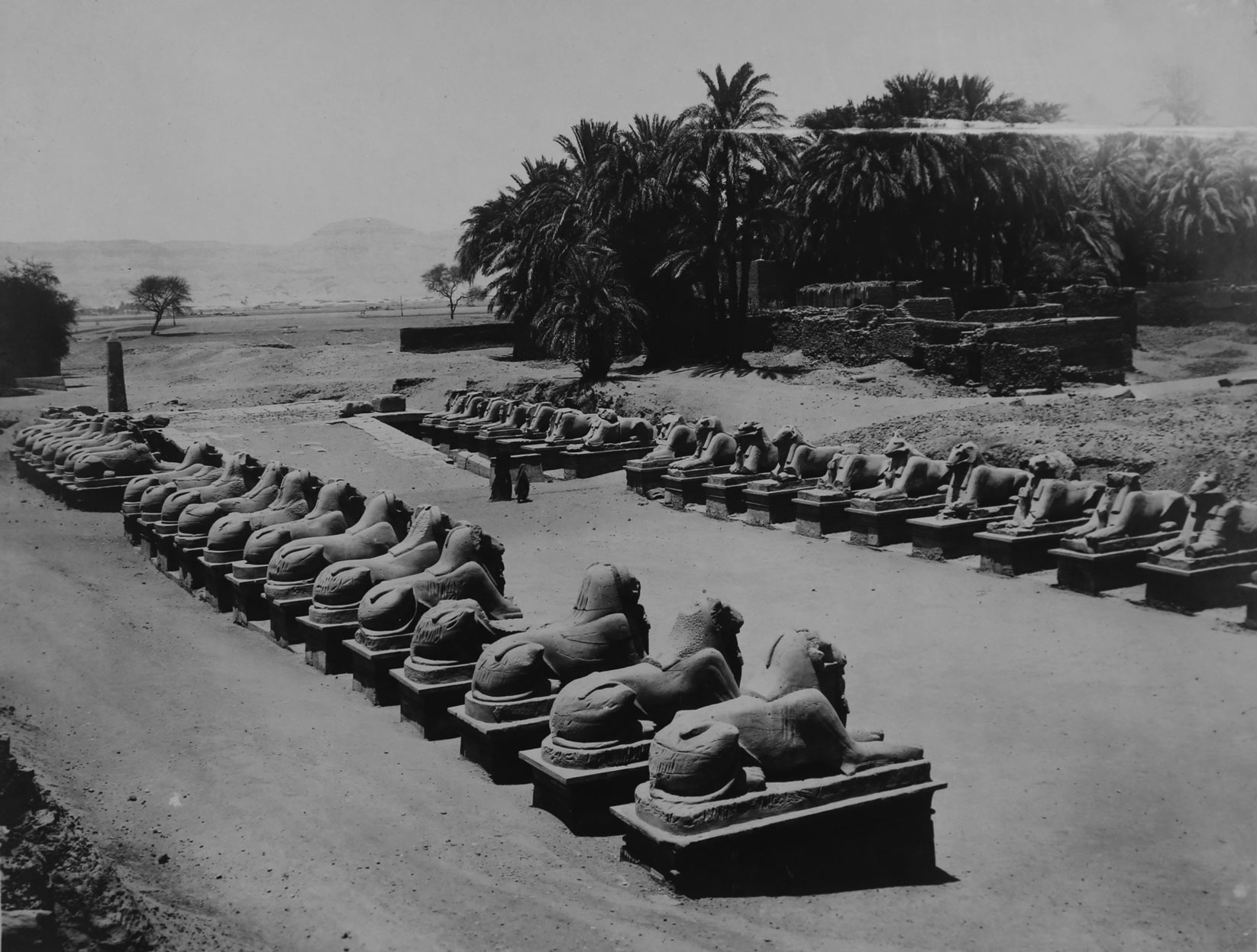 Rows of sphinx at Karnak, image from the Kovar Collection, auctioned 2014.