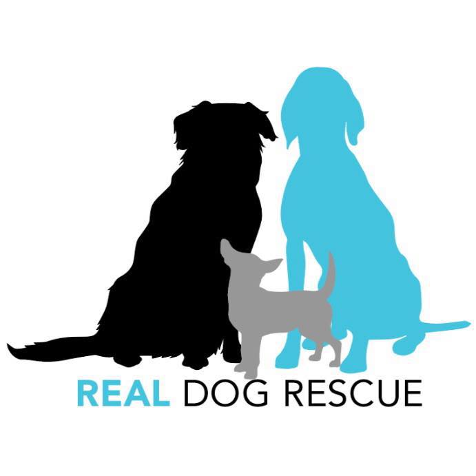 - Real Dog Rescue is grounded in the belief that every dog matters.Real Dog Rescue was built on the passion of long-time animal advocates and friends, dedicated to helping dogs in need, regardless of their age, breed, location or medical condition.While our vision is to rescue every dog, because every dog matters, our mission is to rescue, rehabilitate, and re-home the dogs in our care by providing safe shelter through loving foster homes, medical care by a superior veterinary staff, and behavioral training with the help of a talented volunteer base. We also strive to educate and emulate the best animal welfare practices, not only in our own local community, but also nationally and worldwide.We believe that wherever there is a need, we should help, so long as we have the ability and resources to do so. That ability depends entirely on the support of our community. Real Dog Rescue is not funded by any governmental agencies. We rely solely on donations from our loyal community of supporters. Our mission to rescue , rehabilitate and re-home dogs in need, depends largely on the active involvement of volunteers willing to add their talents to our team!Our hearts are open, our passion is boundless and our journey is just beginning.