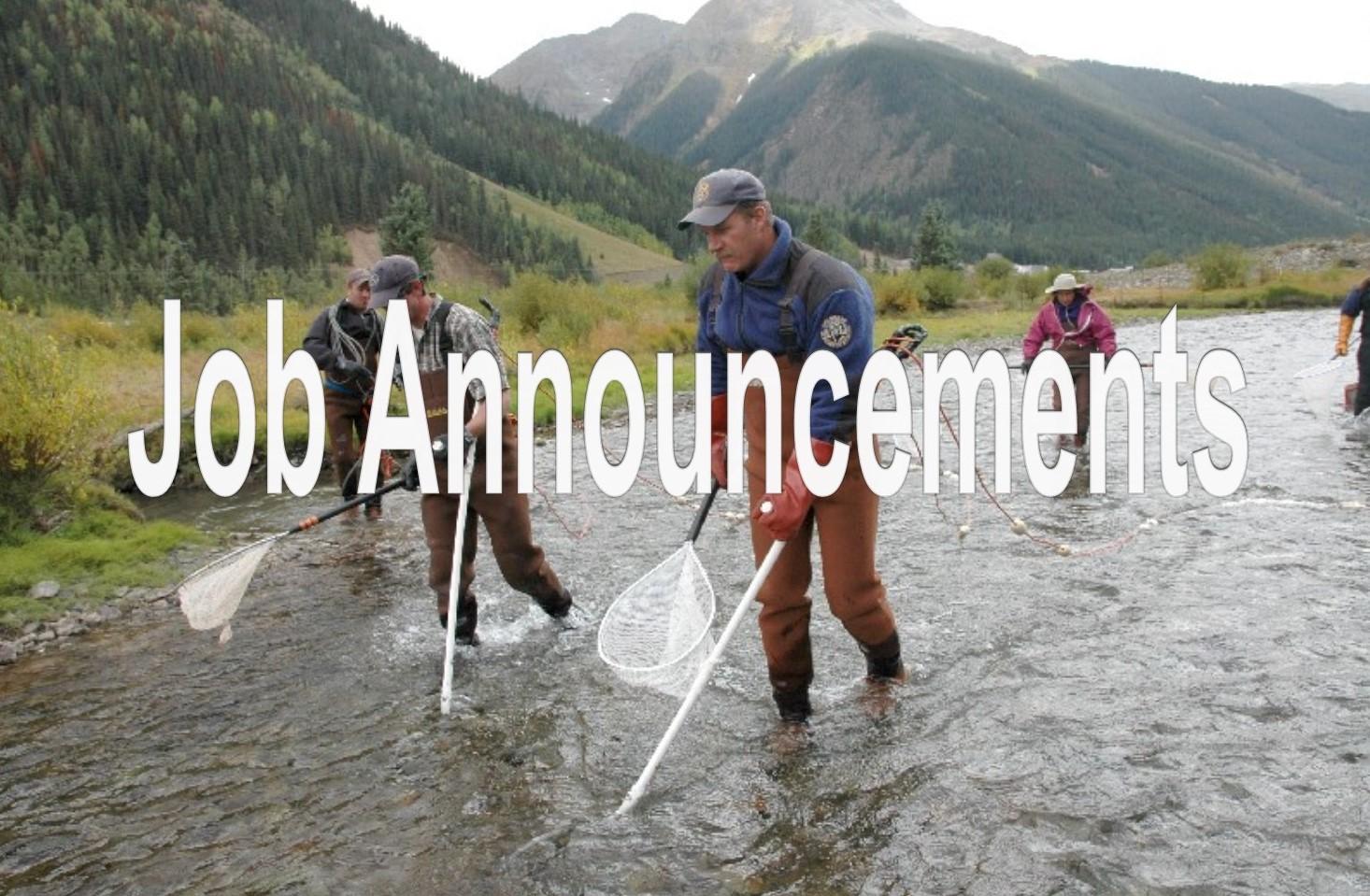 Electro Fishing, Division of Wildlife, Colorado Division of Wildlife, 9/11/2005