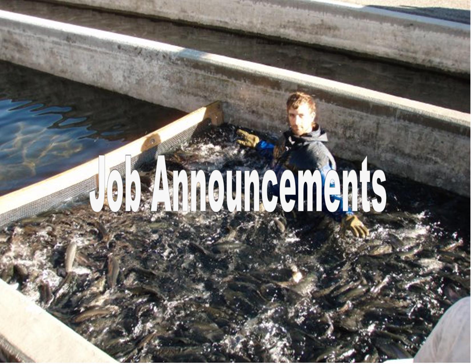 Fish Hatchery Technician, Fish Hatchery Technician, Kyle Okeson, Division of Wildlife, Jason Fearheiley, Colorado Parks and Wildlife, 10/15/2008
