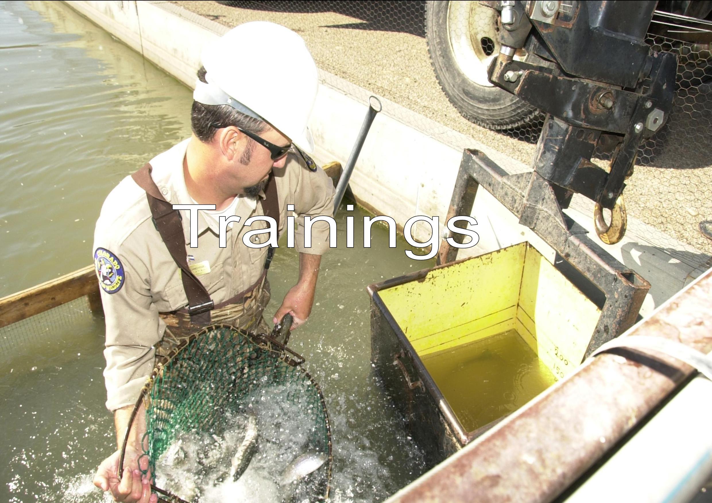 Loading Fish at Pueblo Hatchery, Michael Seraphin, Colorado Parks and Wildlife, 9/29/2009
