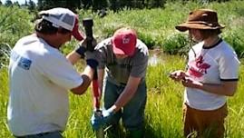 Sugarloaf Wetlands 2.jpg