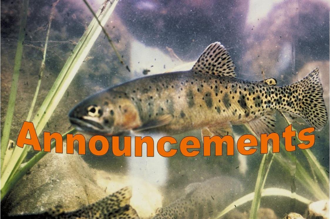 A Rio Grande Cutthroat Trout. Division of Wildlife. U.S. Fish & Wildlife Service. Photo taken: 3/29/2004.