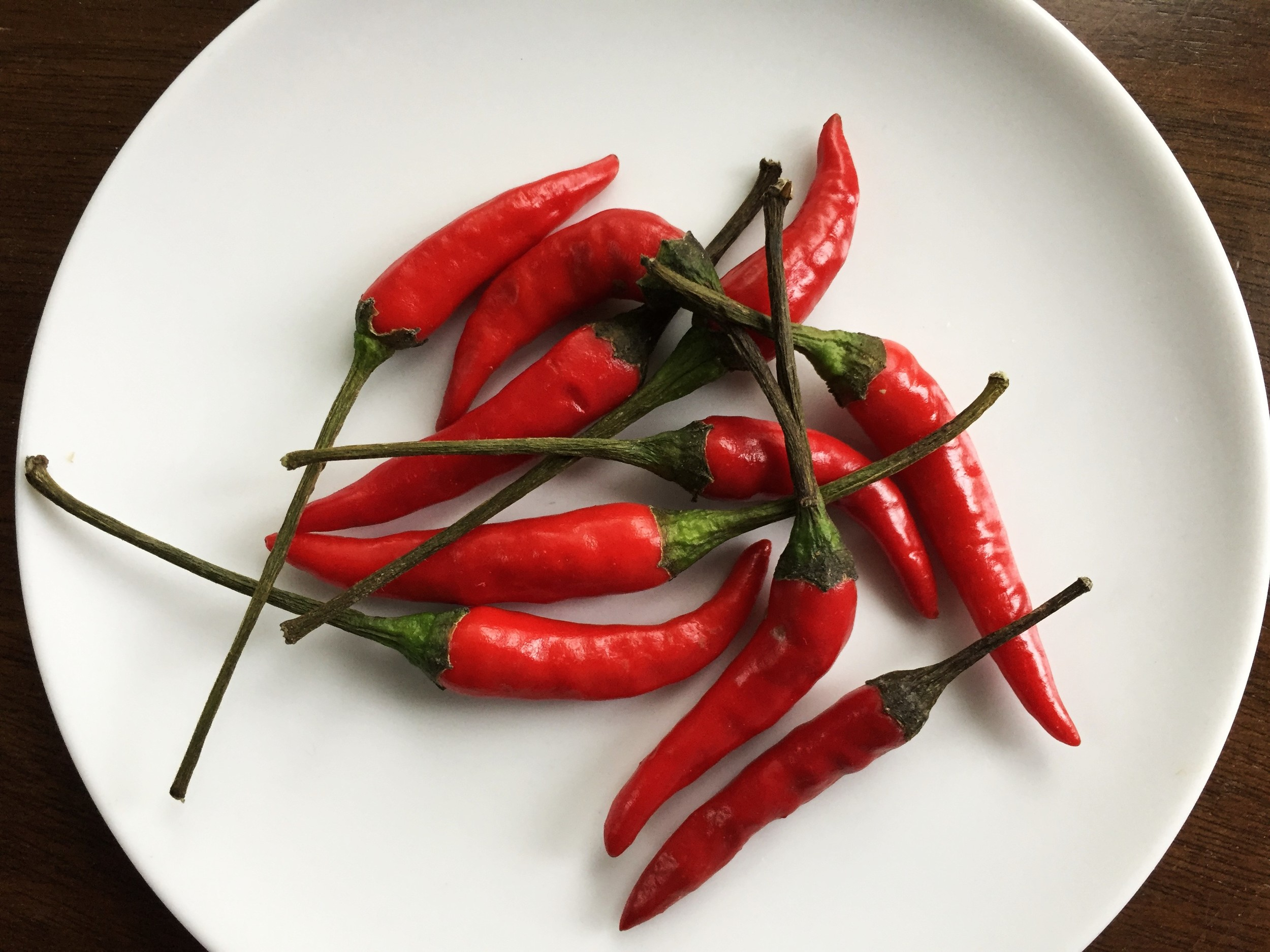 "Thai red chiles, also known as ""bird's eye"" chiles"