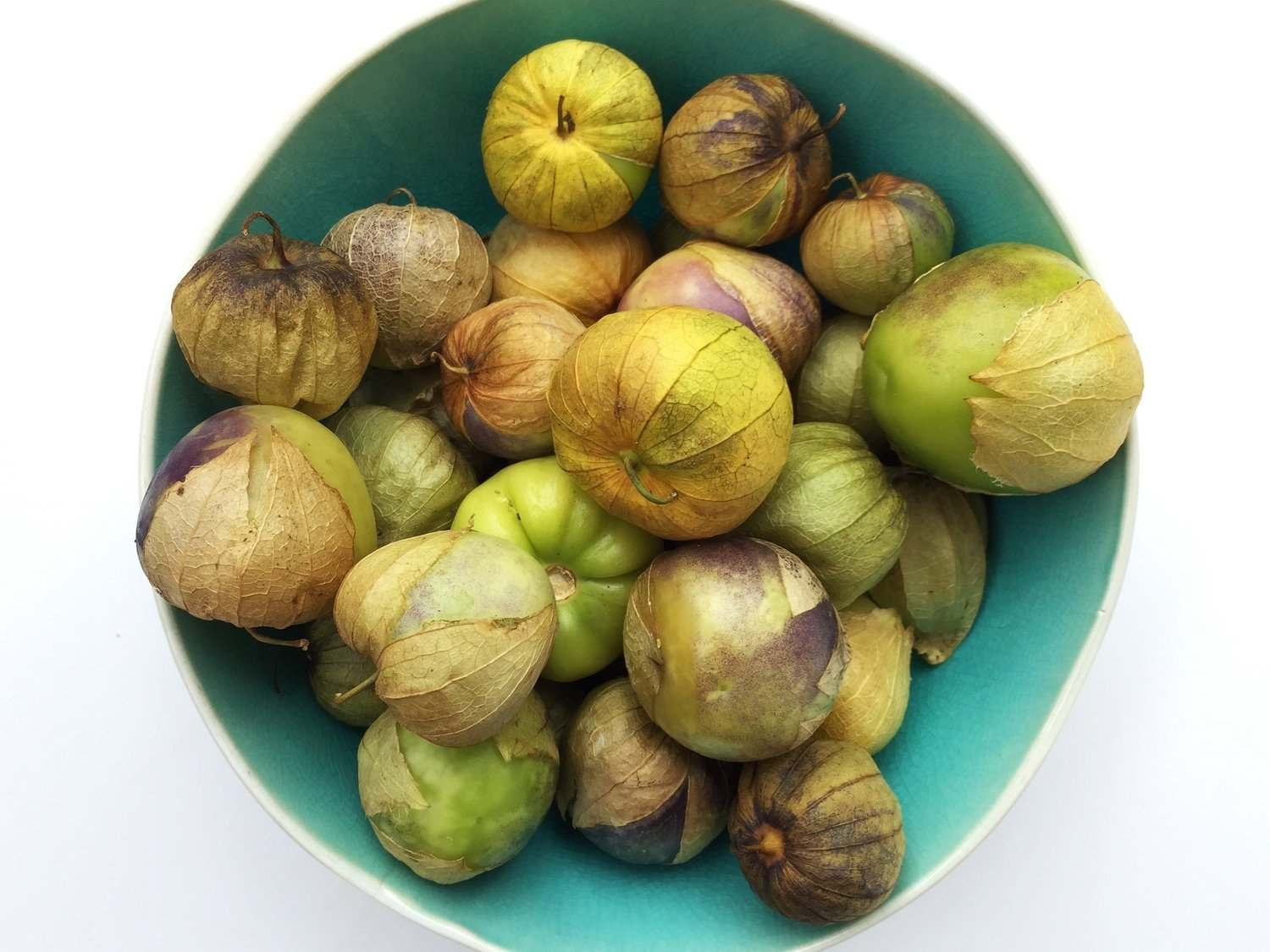 Tomatillos ready for Roasted Tomatillo Salsa in the Adventure Kitchen. Tomatillos can range from very pale to green to purplish. They grow inside a papery husk, enlarging to either completely fill - or more than fill - the husk when fully grown. When you remove the husks and rinse the tomatillos, you may notice they feel slightly sticky - this is normal. Once they are cooked, this stickiness will no longer be present.