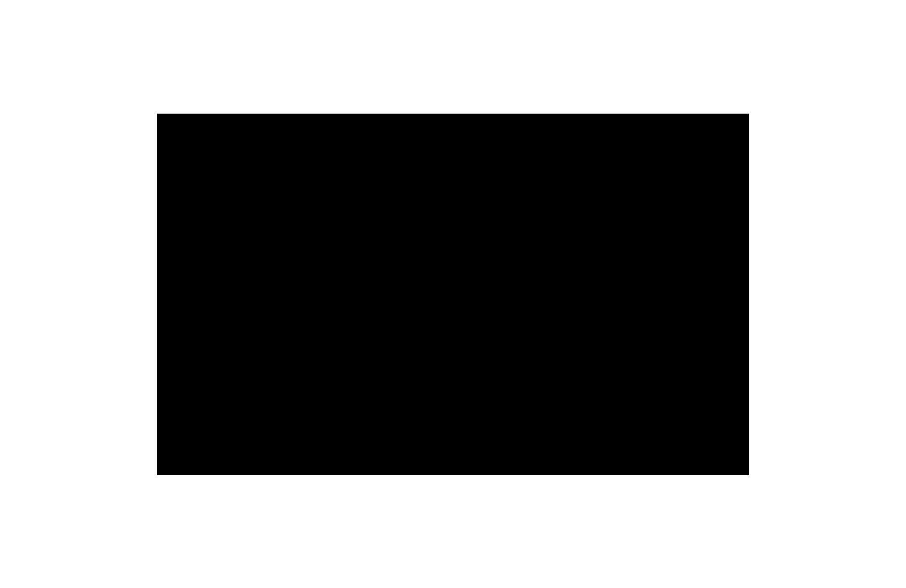 Brand Logo (rebrand)