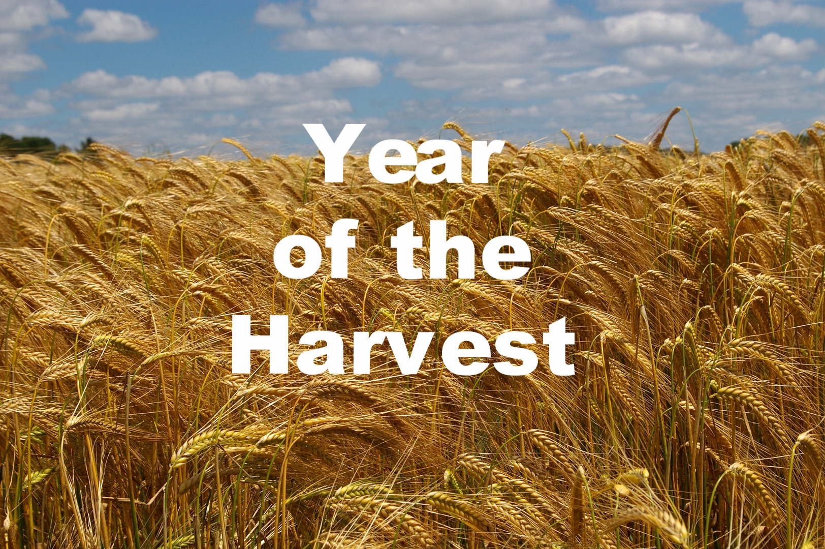 """Year of the Harvest"" 12/31/17"