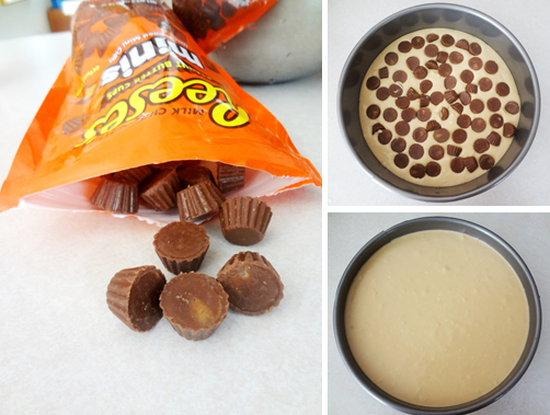 Reese's+Process.png
