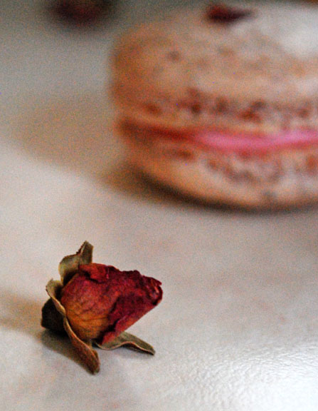 a.+rose+macaron+30.jpg