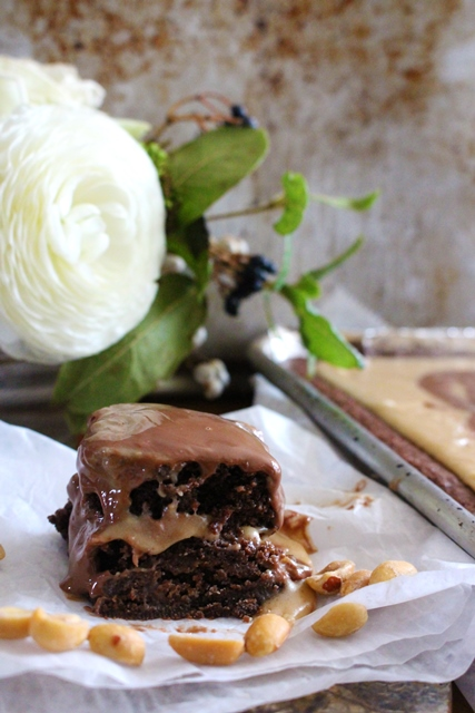 Buckeye Brownies   Pass the Cocoa