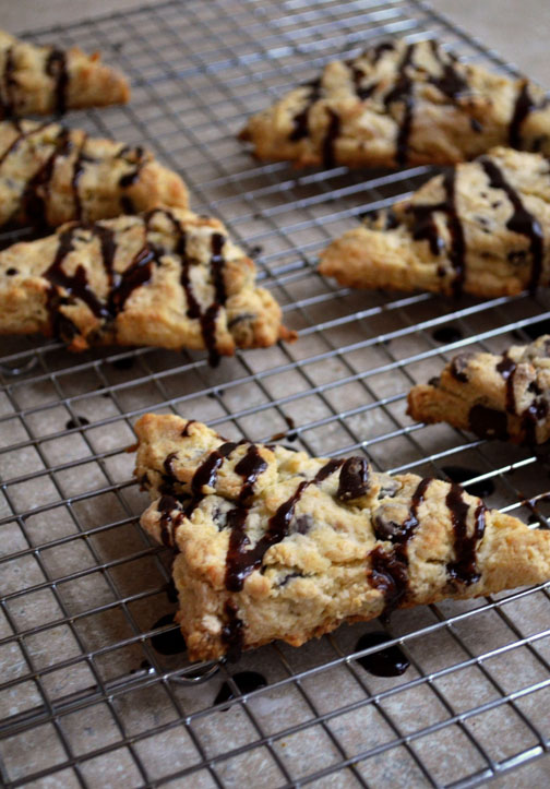 Chocolate Chip Scones | Pass the Cocoa