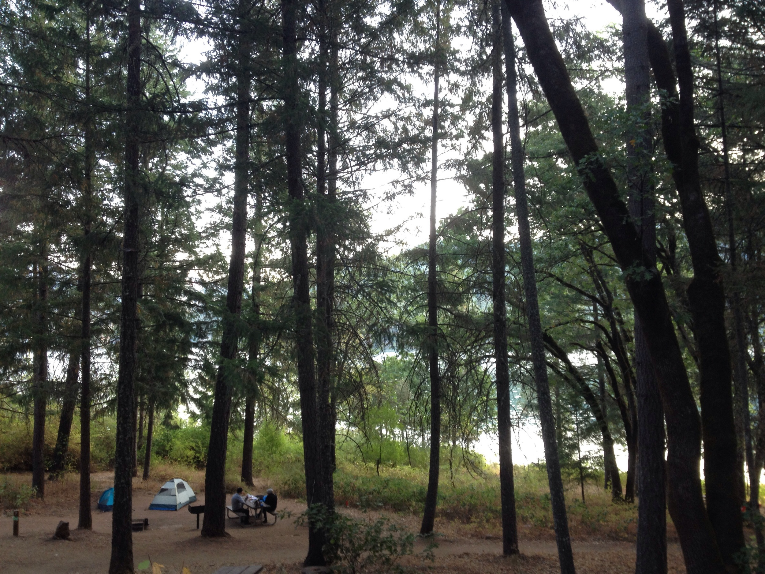 Day One: Mary Smith Campground