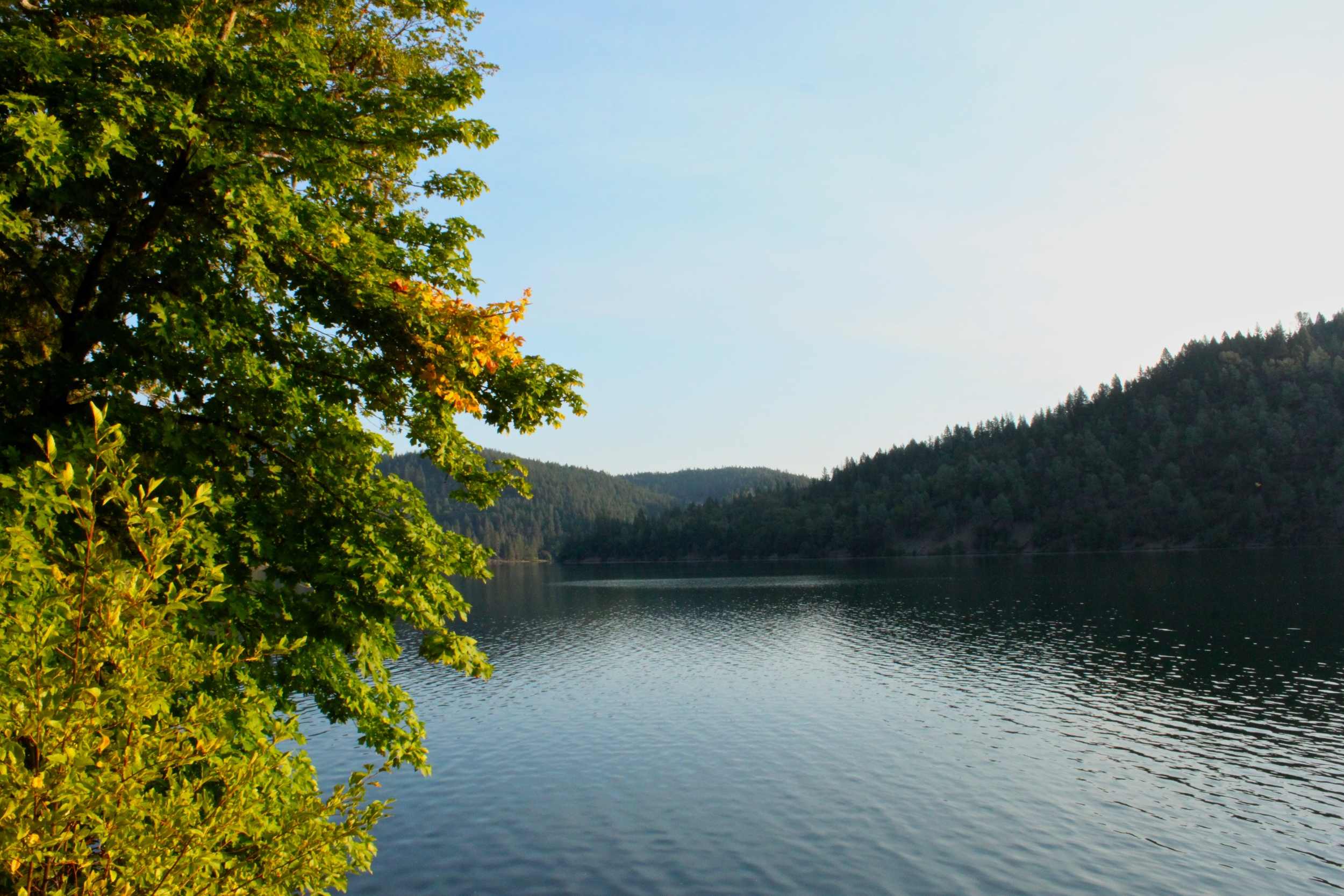 View of Lewiston Lake at Mary Smith Campground