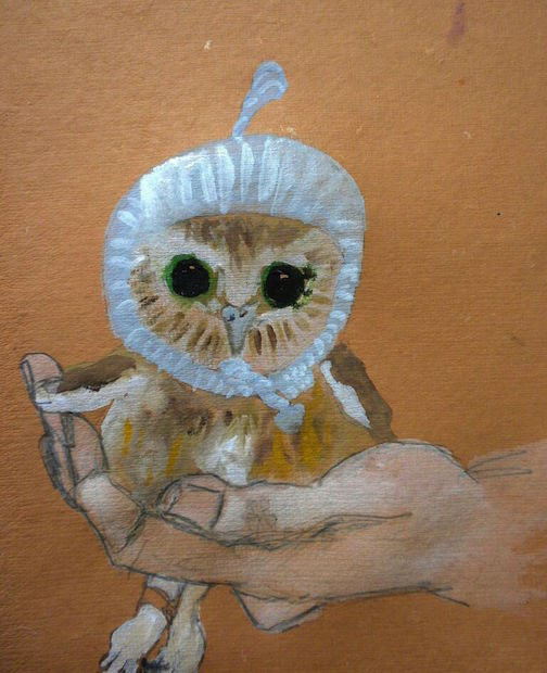 """Baby Owl, 2014 10 x 12"""" gouache, oil stick and graphite on hand made rag paper"""