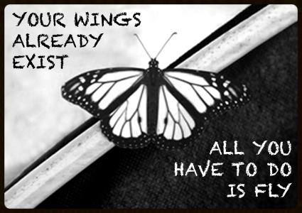 butterflywings.jpg
