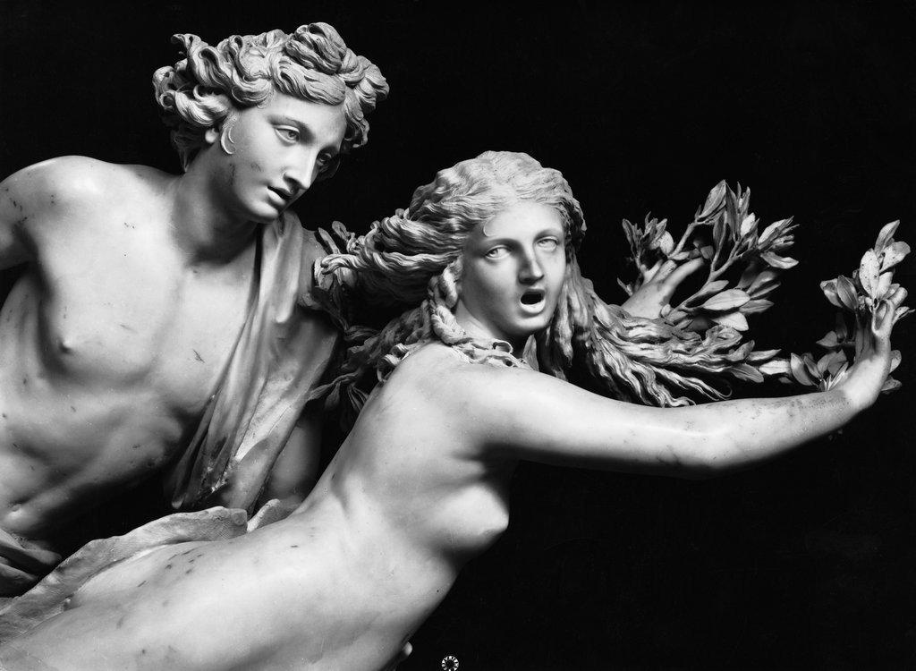 Apollo Daphne