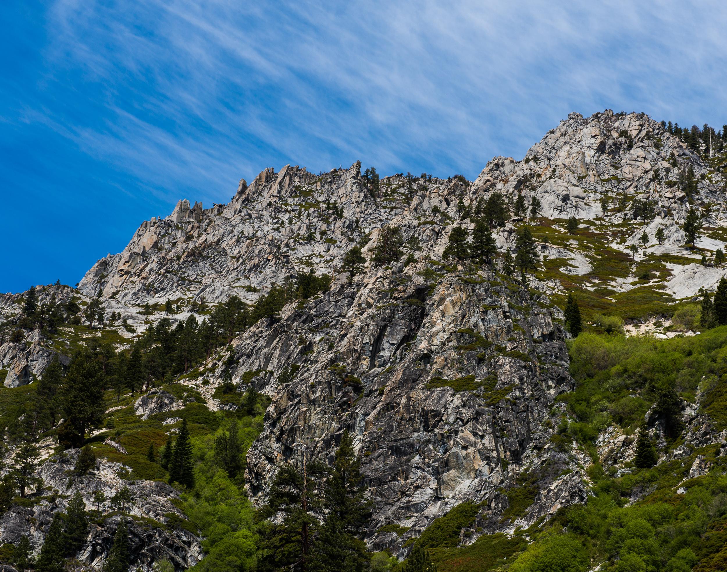 Landscape_Mediate-21.jpg