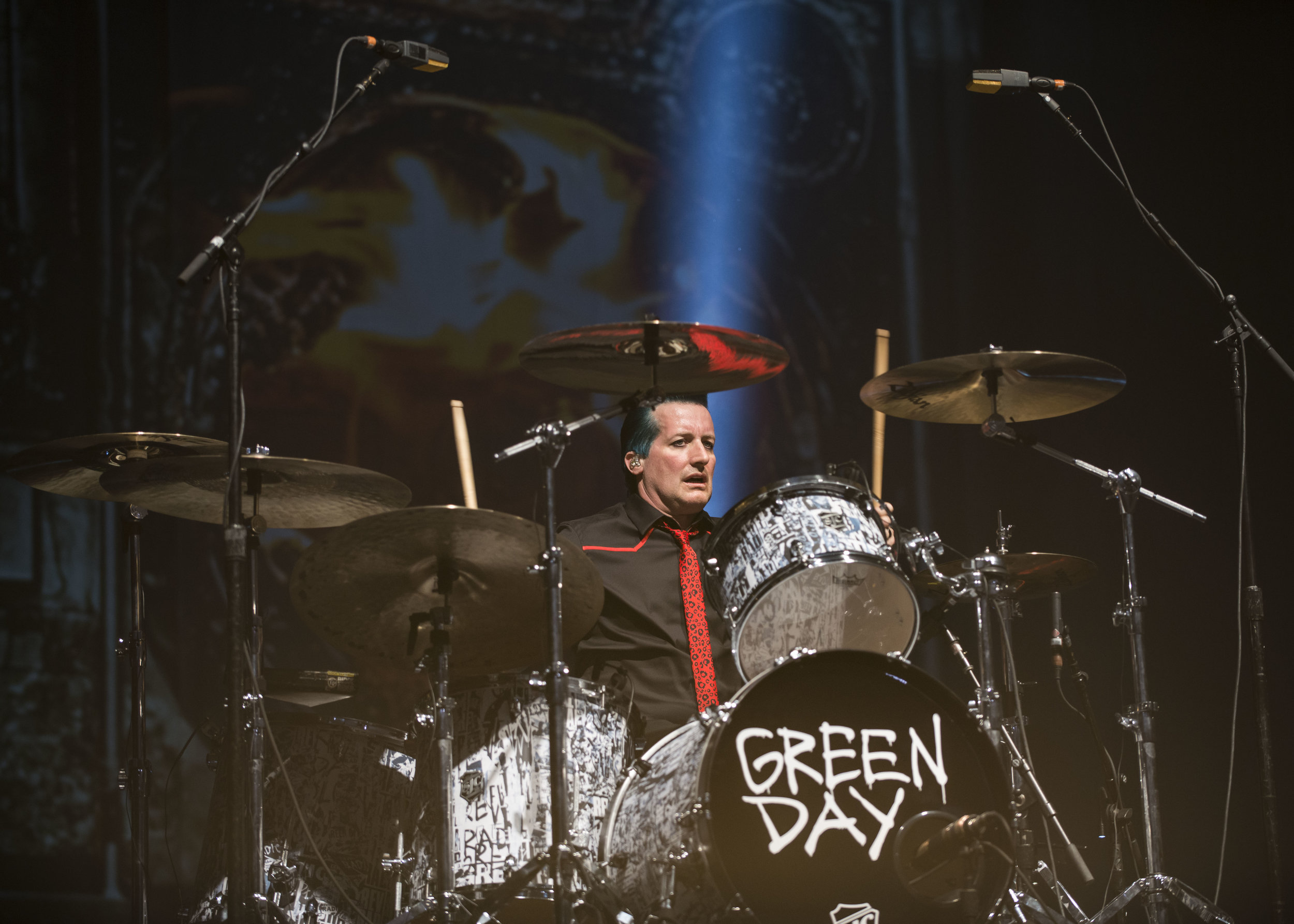 GreenDay_2017_0008.jpg