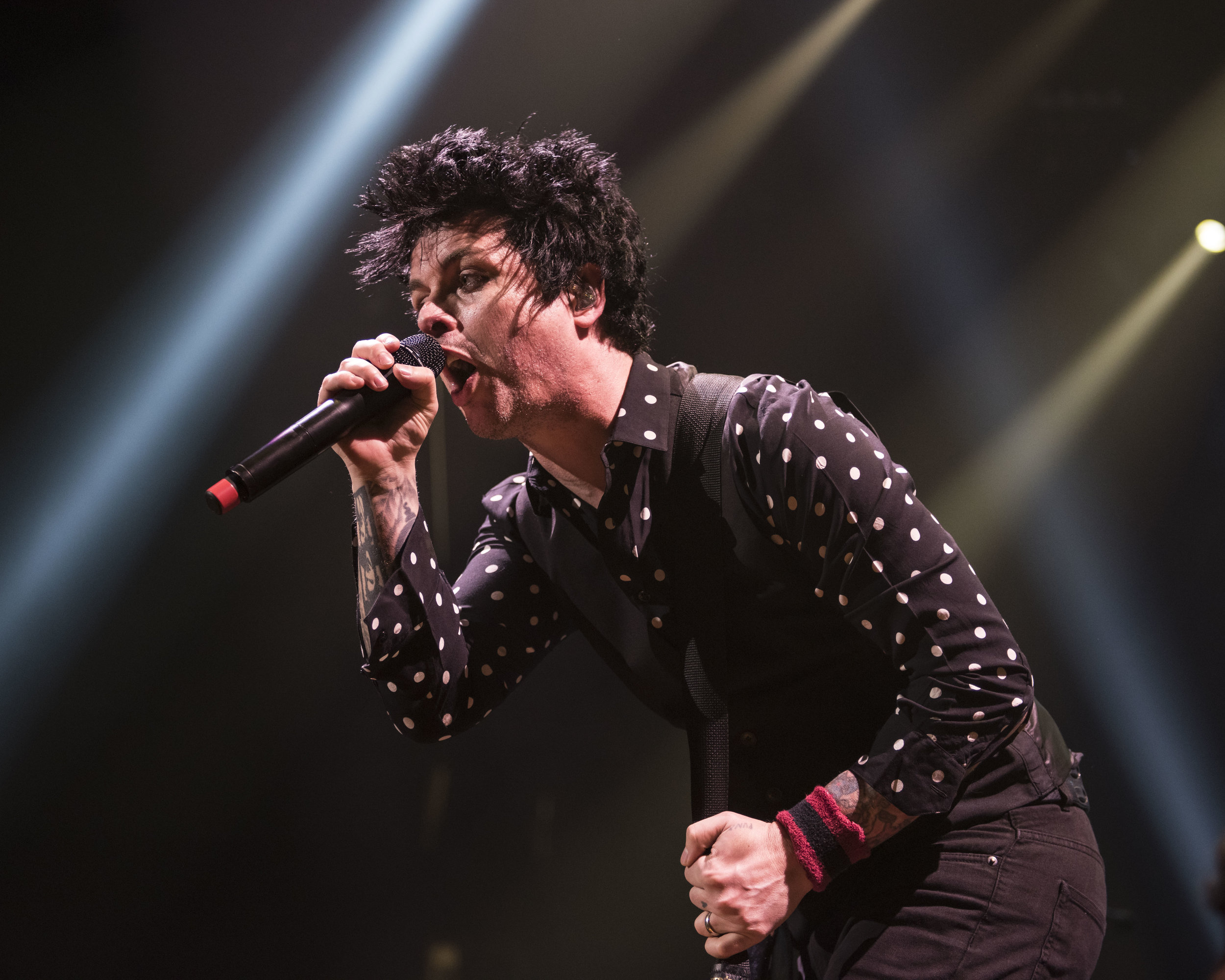 GreenDay_2017_0017.jpg