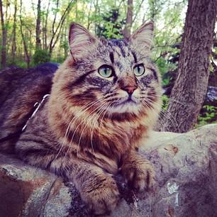 Your Instagram AFTER Outdoor Adventure SPorts