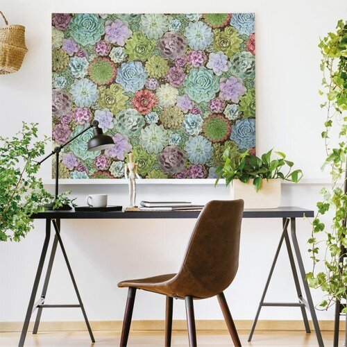 RMK11249RL york wallcovering roommates succulents peel and stick wallpaper art accent